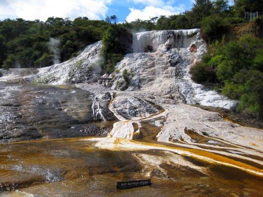 Hot Springs Algae
